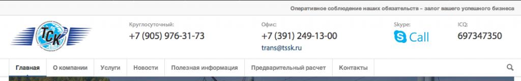 Кроме того в шапке сайта мы разместили все основные контакты, в том числе кнопку позвонить по Skype.